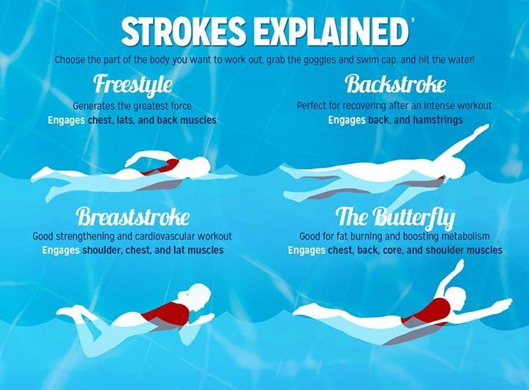 What Are The Most Popular Swimming Strokes?