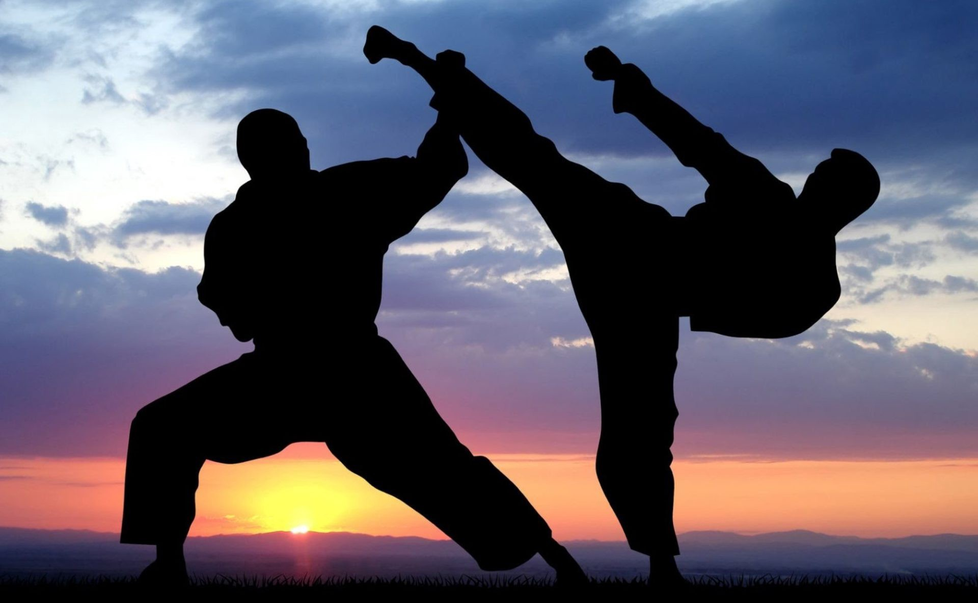 Discover the Most Practiced Martial Arts in the World of Sports